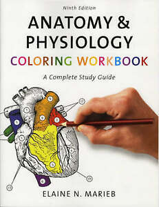 Anatomy-amp-Physiology-Coloring-Workbook-A-Complete-Study-Guide-9th-Edition
