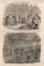 Making Fascines and Gabions -  Skirmish near Beaufort, S.C. -  Civil War - 1862
