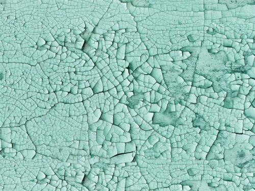 PHOTOGRAPHY COMPOSITION TEXTURE GREEN CRACKED PAINT DRY ART PRINT POSTER MP3444A