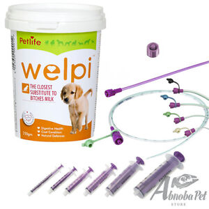 Tube Feeding Set With Welpi Milk Weak Prem Cleft Puppy Whelping
