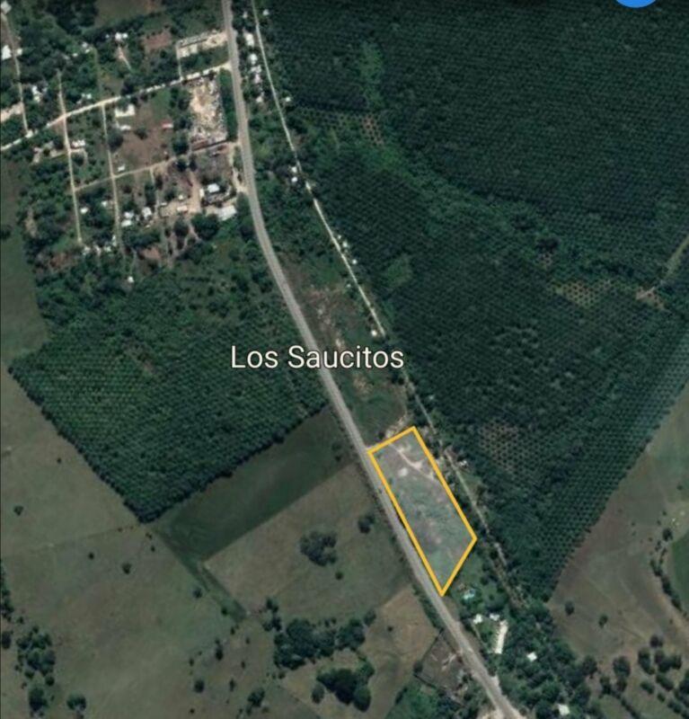 Venta de 1.5 hectareas a orilla de la carretera en Palenque Chiapas