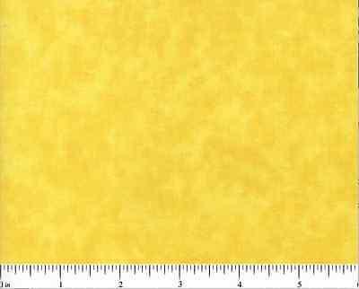 Blenders//Vibrant Yellow#BD-43681-502