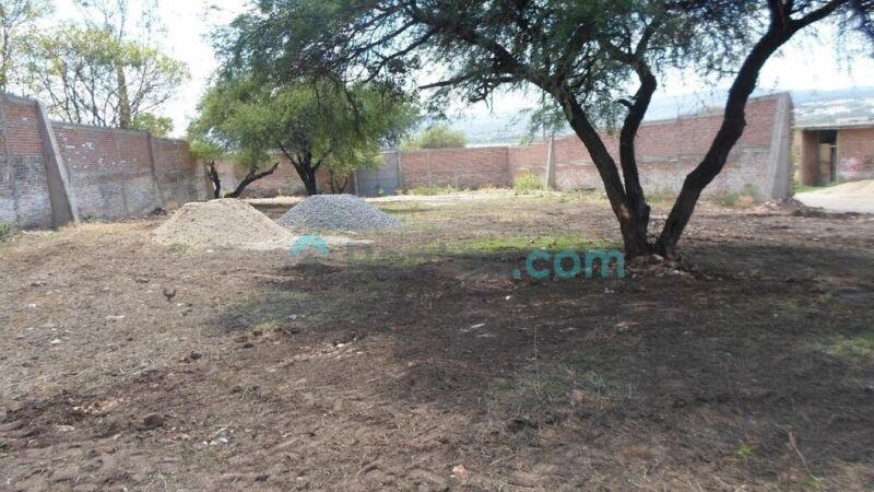 Terreno en Renta con excelente ubicación ideal para uso residencial o comercial en Paseo de la...