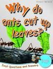1st Questions and Answers Bugs: Why Do Ants Cut Up Leaves? by Miles Kelly Publishing Ltd (Paperback, 2009)