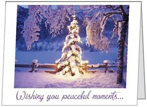 Your-Words-Lighted-TREE-Snowy-Forest-Personal-Business-CUSTOM-Christmas-CARDS