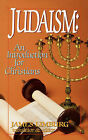 Judaism: An Introduction for Christians by James Limburg (Paperback, 1959)