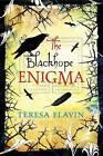 The Blackhope Enigma by Teresa Flavin (Hardback, 2011)