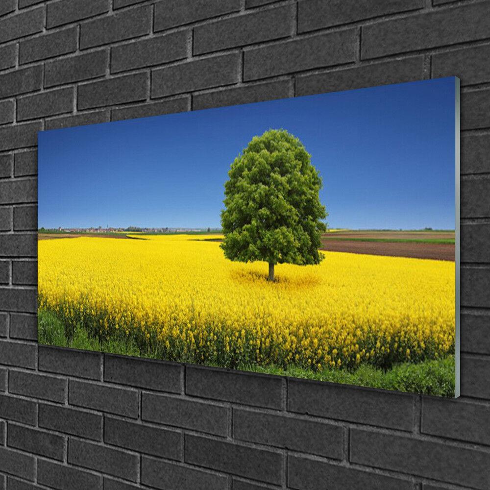 Image sur verre Tableau Impression 100x50 Nature Arbre Prairie