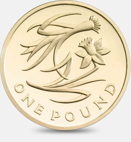COIN HUNT 1983-2015 ALL COINS IN STOCK!!! £1 ONE POUND RARE BRITISH COINS