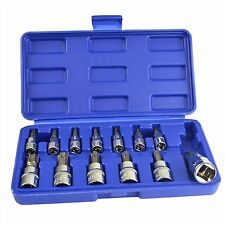 13pc Tamper Proof Torx Star Bit Socket Set 14 38 And 12 Drive With Case