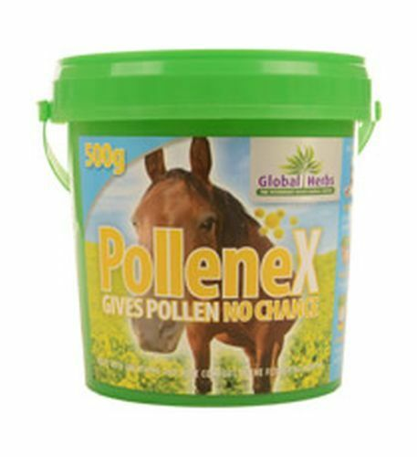 Global Herbs Pollenex  500 GMGLB0570