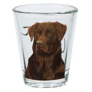 Labrador Retriever Portrait Shot Glass