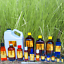 3ml-Essential-Oils-Many-Different-Oils-To-Choose-From-Buy-3-Get-1-Free thumbnail 99