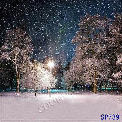 Christmas 10'x10' Computer-painted Scenic Photo Background Backdrop SP739B881
