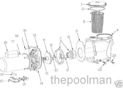 2 Pack Waterway Champion 715-1201 Swimming Pool Drain Plugs w// O-rings