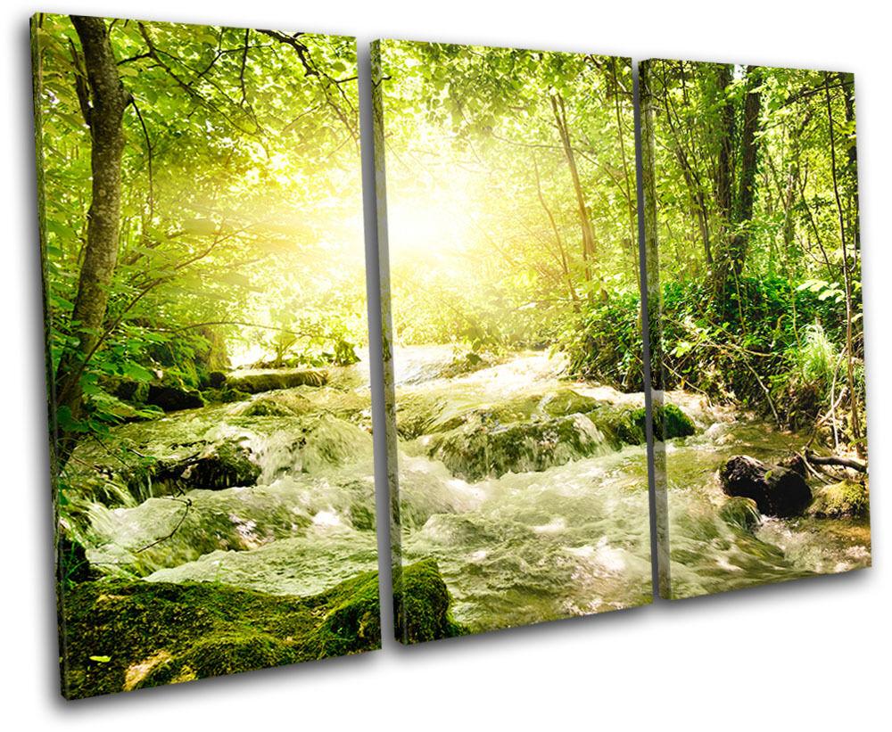 Forest Stream Landscapes TREBLE Leinwand Wand Kunst Bild drucken