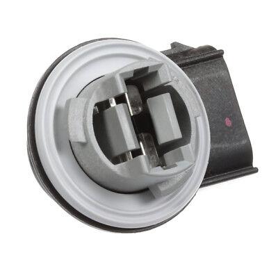 OEM NEW 2008-2014 E150 E250 E350 Head Light Tail Light Lamp /& Turn Signal Socket