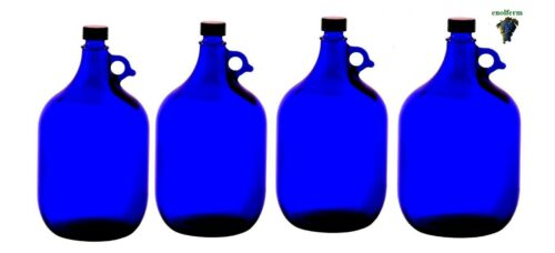 Flasche 4 x 5 Liter Glasballon Glasballonflasche Henkelflasche Gallone blau