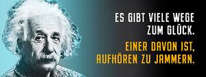 Albert Einstein Collage Saying 53 Tin Sign Shield 10 X 27 CM K1611