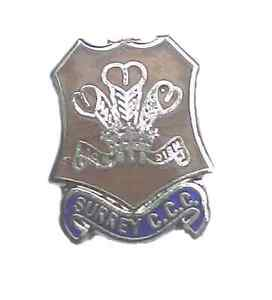 DURHAM HARD ENAMEL QUALITY LAPEL PIN BADGE