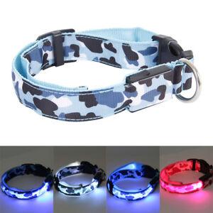 Bright-LEDclignotant-lumiere-jusqu-039-a-chien-collier-animal-laisse-charge-batterie