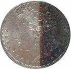 1891 Morgan Silver Dollar in Plastic Holder