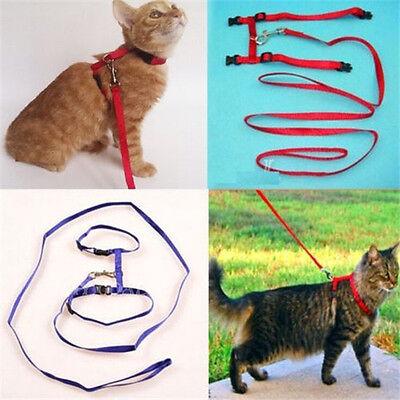 FD2239 Pet Cat Kitten Adjustable Harness Lead Leash Collar Belt Rope Safety 1pc