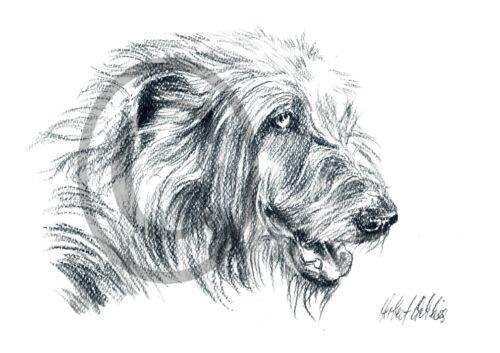 Hunde Kunstdruck Zeichnung Haustiere Irischer Wolfshund 004 Tiere