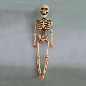 FP-ALS-Scary-Simulation-Human-Skeleton-Ornament-Halloween-Party-Haunted-House