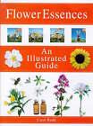 Flower Essences by Carol Rudd (Paperback, 1998)