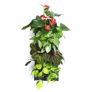 Image Is Loading 7 Pocket ECO Hanging Vertical Garden Wooly Wall