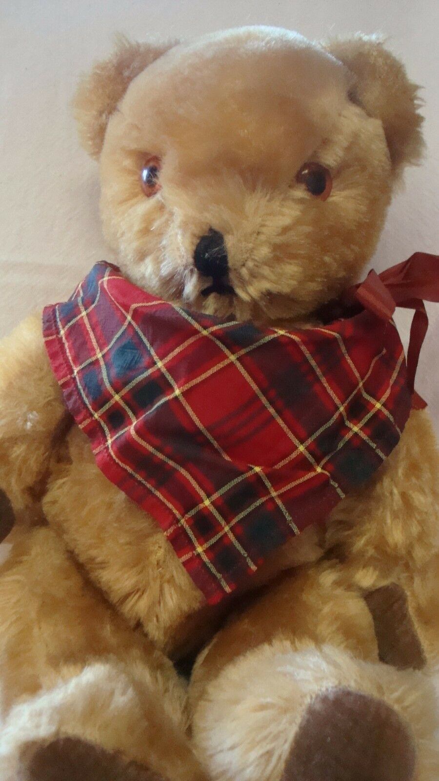VINTAGE 1950s  PEDIGREE BELL IN  EAR JOINTED GoldEN MOHAIR TEDDY BEAR
