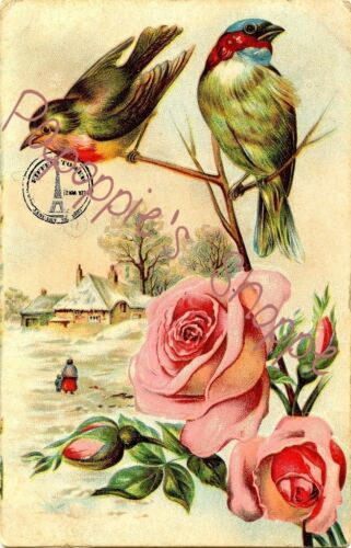 Fabric Block French Postcard Birds and Pink Roses Beautiful