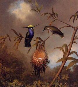 ZWPT255-100-hand-painted-charm-landscape-birds-decor-art-oil-painting-on-canvas