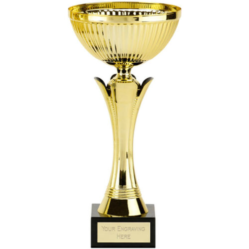 gw Equity Gold Cup  Award Trophy,Multisport 235mm 465A FREE Engraving