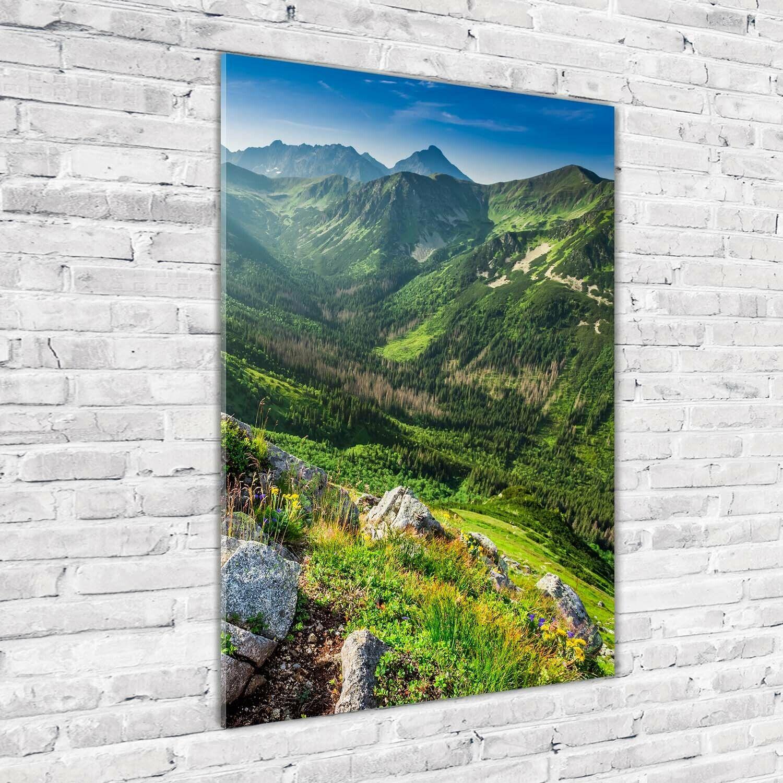 Wand-Bild Kunstdruck aus Acryl-Glas Hochformat 70x100 Berge im Sommer