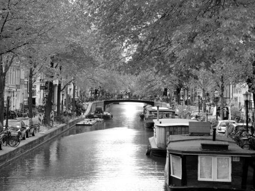 Vlies Tapete XXL Poster Fototapete Natur Herbst Amsterdam