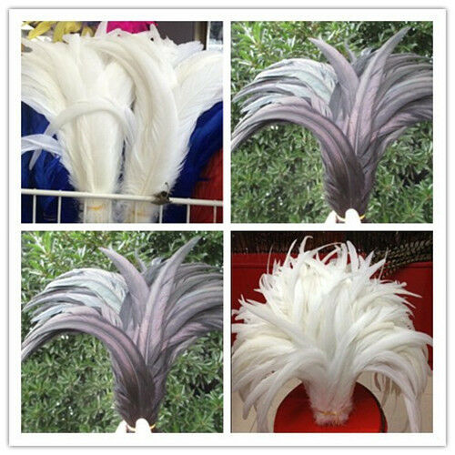 25-45cm black rooster tail feathers 10-18inches 10-200 pcs White Wholesale