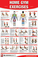 Home Gym Exercises Professional Fitness Gym Wall Chart Poster