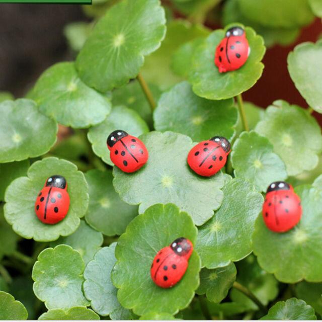 Delicieux 20pc Mini Ladybug Garden Ornaments Scenery Craft For Plant Fairy DecorXA LE