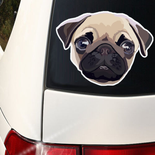 Pug Face Decal Full Color Indoor I love my PUG 8 in x 6  inch Outdoor