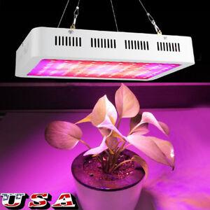 1000W-LED-Grow-Light-Kits-Full-Spectrum-UV-for-Veg-Flower-Plants-Hydroponics-US