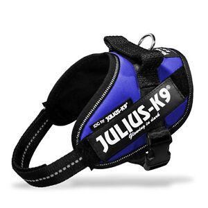 Harnais pour chien Idc Power Harnesses, Couleur Bleu, produit Julius K9