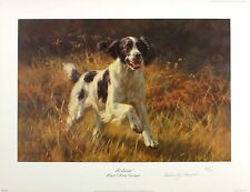 """Heno """"Black & White Springer"""" Spaniel Perro SGD Ltd Ed Tamaño: 47cm X 63cm Nuevo"""