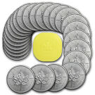 Tube of 25 1oz Maple Leaf Coins