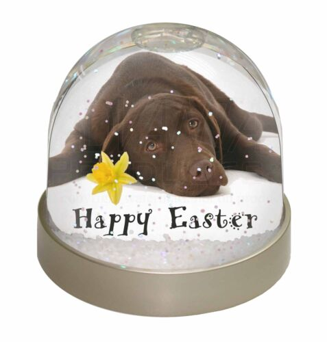 'Happy Easter' Chocolate Labrador Photo Snow Globe Waterball Stocki, ADL54DA1GL