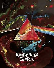 GATHERING STORM (9781608876785) - STORM THORGERSON (HARDCOVER) NEW