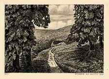 RIESENGEBIRGE - ALTE SCHLESISCHE BAUDE um 1910 Heliogravure v.Welin