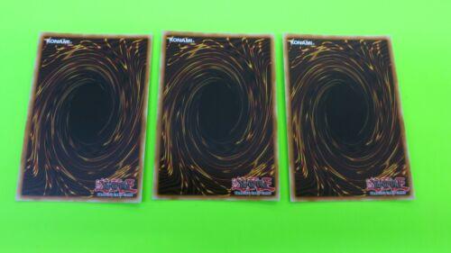 3x SHIRANUI SQUIRESAGA SAST-ENSP1 LIMITED EDITION SNEAK PLAYSET YUGIOH UNPLAYED
