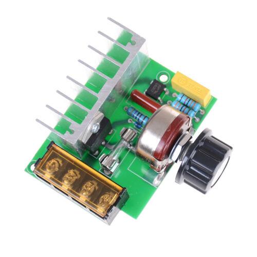 4000W AC 220V SCR Voltage Adjustable Regulator Motor Speed Control Dimmer DS